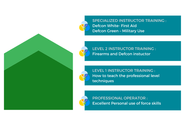 Use of Force Instructor Training - AMS Defcon